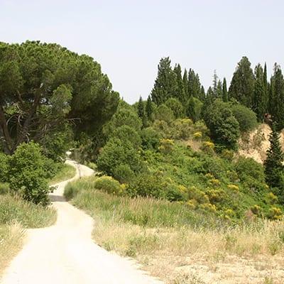 Val d'Orcia i Toscana, MTB resa