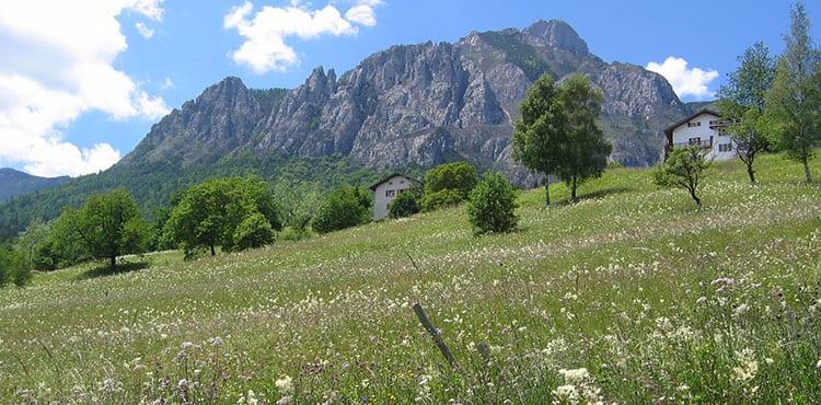 Härliga ängar och vyer under Mountainbike resan i Trentino i Dolomiterna
