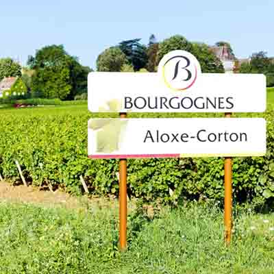 Aloxe-Corton-Bourgogne-EverTrek