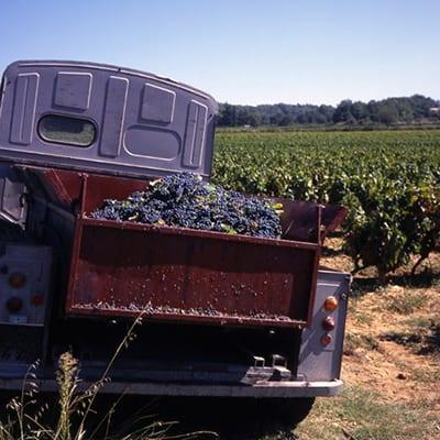 Bordeaux vandringsresa