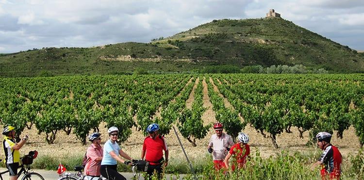 Vi cyklar längs vinodlingarna i La Rioja. Cykelresor på egen hand med bagagetransporter.