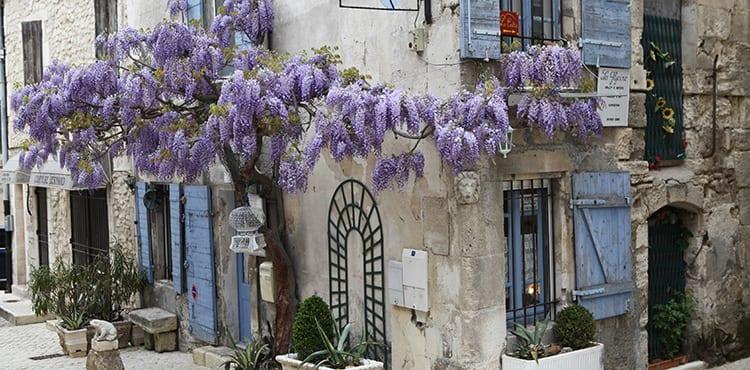 Blomstrande-hus-provence
