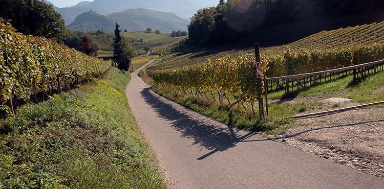Cykelresa från Dolomiterna till Gardasjön