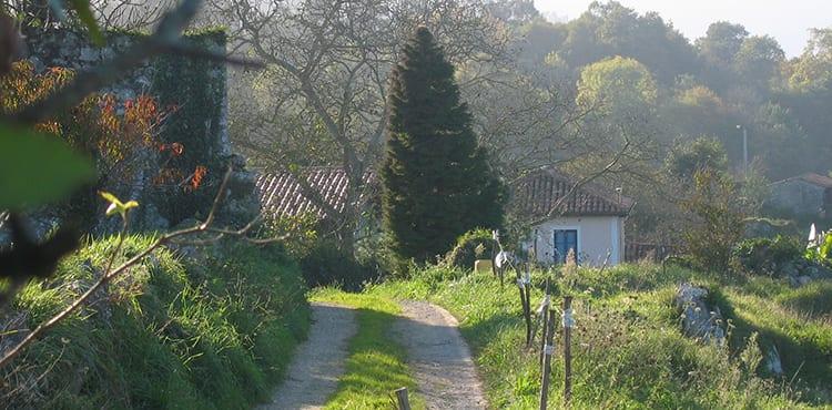 Cykelresa Asturien på landsbygden