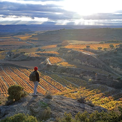 Vy Rioja