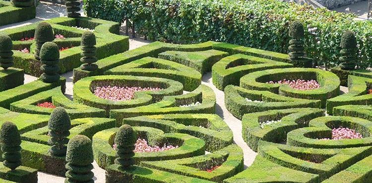 loiredalen-villandry-trädgårdar